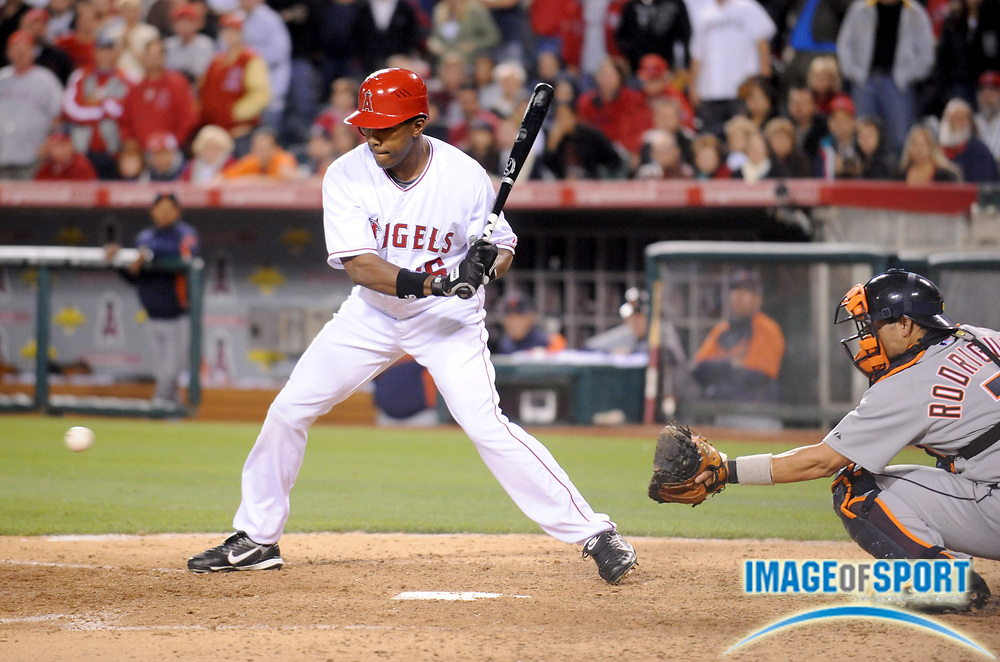 May 26, 2008; Anaheim, CA, USA; Los Angeles Angels left fielder Garret Anderson (16) watches a called ball four cross the plate with the bases-loaded in the 12th inning of 1-0 victory over the Detroit Tigers at Angel Stadium. Mandatory Credit: Kirby Lee/Image of Sport-US PRESSWIRE
