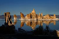 090-P101937<br /> <br /> Mono Lake Tufa State Reserve<br /> &copy; 2018, California State Parks.<br /> Photo by Brian Baer