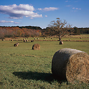 Hay Bales, Ipswich Massachusetts, Appleton Farms, owned by The Trustees of Reservations