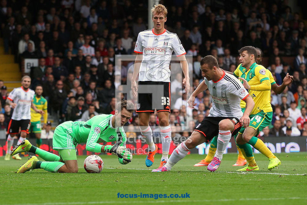 Marcus Bettinelli of Fulham smothers the ball after a goalmouth scramble during the Sky Bet Championship match at Craven Cottage, London<br /> Picture by Paul Chesterton/Focus Images Ltd +44 7904 640267<br /> 18/10/2014