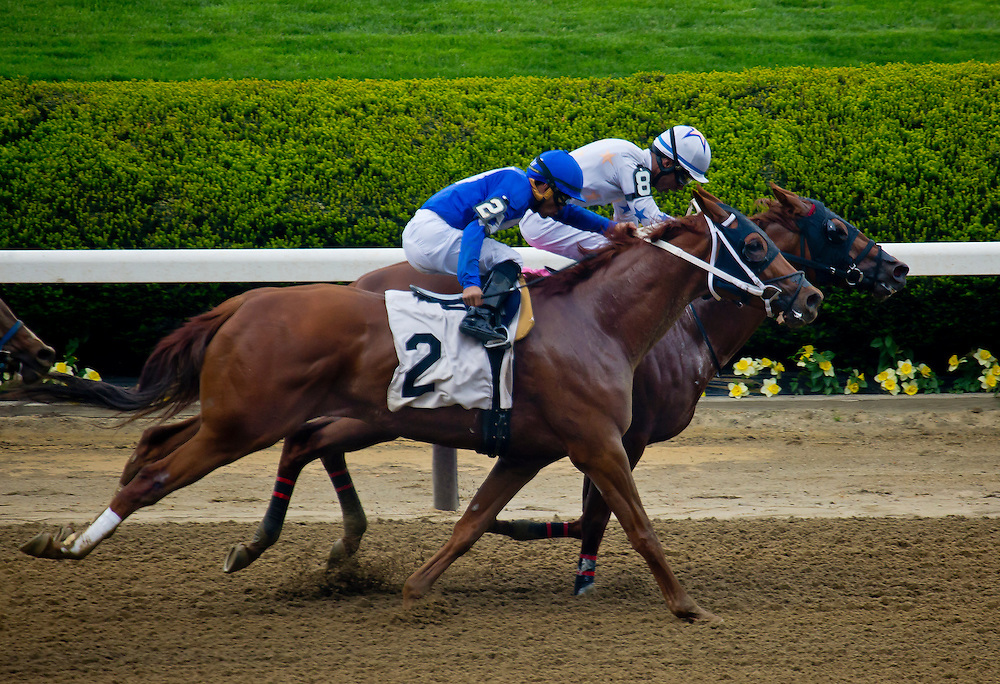 """""""Frosty Agosti"""" (inside) with Kendrick Carmouche aboard holds off """"Gorelli"""" and lights up the tote board for $70. May 14, 2016, Belmont Park."""