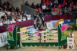 AABO Micheal (HGK), Barcelona<br /> Neustadt-Dosse - CSI 2019<br /> 2. Qualifikation Youngster Tour für 7 und 8 jährige Pferde<br /> 11. Januar 2019<br /> © www.sportfotos-lafrentz.de/Stefan Lafrentz