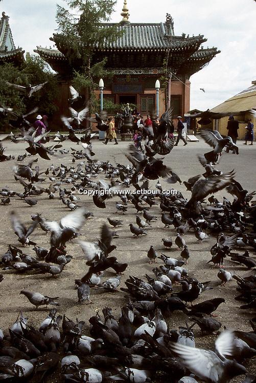 Mongolia. Ulaanbaatar. Gandan Buddhist Monastery  Oulan Bator       / Gandan monastere   Oulan Bator  Mongolie   / R87/216    L920803a  /  P0007389 / pigeon