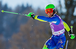 KRANJEC Zanof Slovenia did not finish during 1st Run of Men's Slalom - Pokal Vitranc 2012 of FIS Alpine Ski World Cup 2011/2012, on March 11, 2012 in Vitranc, Kranjska Gora, Slovenia.  (Photo By Vid Ponikvar / Sportida.com)