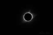 The total solar eclipse of August 21, 2017. Photographed outside Nashville, TN. Solar flares are visible within the inner corona.