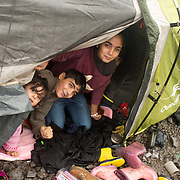 France. Refugees. Grande Synthe camp near Dunkirk. People are camping in a wood with very few facilities. A mobile clinic visits once a week. A Kurdish family from Iraq shelter in their tent from the pouring rain