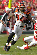 October 14, 2007 - Kansas City, MO..Wide receiver T.J. Houshmandzadeh #84 of the Cincinnati Bengals in action against the Kansas City Chiefs, during a NFL game at Arrowhead Stadium in Kansas City, Missouri on October 14, 2007...FBN:  The Chiefs defeated the Bengals 27-20.  .Photo by Peter G. Aiken/Cal Sport Media
