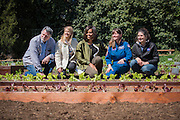 "First Lady Michelle Obama and the Nasa Team pose behind ""Outredgeous"" lettuce the first vegetable grown in space which was bred by Frank Morton of Wild Garden Seed in Philometh, Oregon."