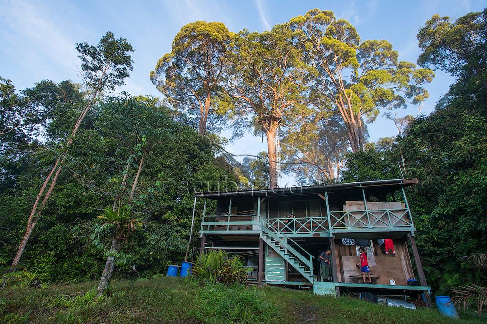 The Nepenthes Camp, Maliau Basin, Sabah, Malaysia, Borneo,