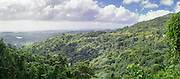 Panoramic view of El Yunque National Forest, looking south towards Naguabo, Puerto RIco.