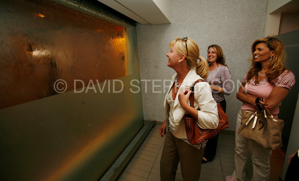Roxanne Black, left, and friends Stacy Lish and Rhonda Davis, found the urinal in the men's restroom interesting enough to see it first-hand at 21c hotel and museum created and ownded by Laura Lee Brown and Steve Wilson, pictured in Louisville, Ky., on Tuesday, June 24, 2008. The urinal, consists of cascading water, ceiling to floor, over a one-way piece of glass that faces a public hallway allowing the men to watch passers-by as they use the urinal. Photo by David Stephenson | Staff 5883