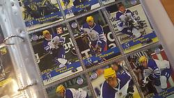 Herning Blue Fox<br /> <br /> Officielle Danske Hockey Trading Card. <br /> <br /> 1999-2000 Komplet Danske Ishockey Kort 225 stk.<br /> <br /> 46. Peter Therkildsen<br /> 47. Greg Taylor<br /> 48. Claus Mortensen<br /> 49. Daniel Nielsen<br /> 50. Jan Philipsen<br /> 51. Kasper Degn<br /> 52. Martin Kristiansen<br /> 53. Jarmo Kuusisto<br /> 54. Scott Stevens<br /> 55. Rasmus Hartung<br /> 56. Todd Björkstrand<br /> 57. Ronny Larsen<br /> 58. Frederik Åkesson<br /> 59. Martin Struzinski<br /> 60. Christoffer Kjærgaard<br /> 61. Jesper Mølby<br /> 62. Rasmus Pander<br /> 63. Dan Jensen<br /> 64. Lasse Degn<br /> 65. Sami Wikström<br /> <br /> Begrænset komplet sæt på lager. Kontakt: mail@nhcfoto.dk eller tlf. 40277826