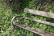 Overgrown Bench by the Cotswold Way near Wotton-under-Edge, Gloucestershire