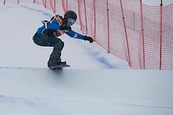 HERNANDEZ-CERVELLON Cecile, Snowboarder Cross, 2015 IPC Snowboarding World Championships, La Molina, Spain