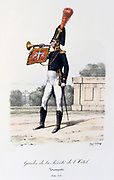Trumpeter, 1814-1816.  'Histoire de la maison militaire du Roi de 1814 a 1830' by Eugene Titeux, Paris, 1890.