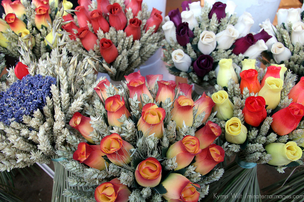 Dried Flowers of a French Market