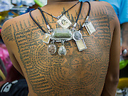 """07 MARCH 2015 - NAKHON CHAI SI, NAKHON PATHOM, THAILAND: Amulets and Sak Yant tattoos on a man at the Wat Bang Phra tattoo festival. Wat Bang Phra is the best known """"Sak Yant"""" tattoo temple in Thailand. It's located in Nakhon Pathom province, about 40 miles from Bangkok. The tattoos are given with hollow stainless steel needles and are thought to possess magical powers of protection. The tattoos, which are given by Buddhist monks, are popular with soldiers, policeman and gangsters, people who generally live in harm's way. The tattoo must be activated to remain powerful and the annual Wai Khru Ceremony (tattoo festival) at the temple draws thousands of devotees who come to the temple to activate or renew the tattoos. People go into trance like states and then assume the personality of their tattoo, so people with tiger tattoos assume the personality of a tiger, people with monkey tattoos take on the personality of a monkey and so on. In recent years the tattoo festival has become popular with tourists who make the trip to Nakorn Pathom province to see a side of """"exotic"""" Thailand.   PHOTO BY JACK KURTZ"""