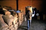 Un ouvrier porte des sacs de grains de café dans une usine de déparchage de café, à Gitega, centre du Burundi.