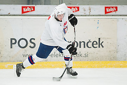 Rok Lebar during practice session of Slovenian Ice Hockey National Team for IIHF World Championship in Sweden and Finland, on March 28, 2013, in Arena Zlato Polje, Kranj, Slovenia. (Photo by Vid Ponikvar / Sportida.com)