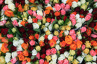 2004, Amsterdam, Netherlands --- Roses at Albert Kuyp Market --- Image by © Owen Franken/CORBIS