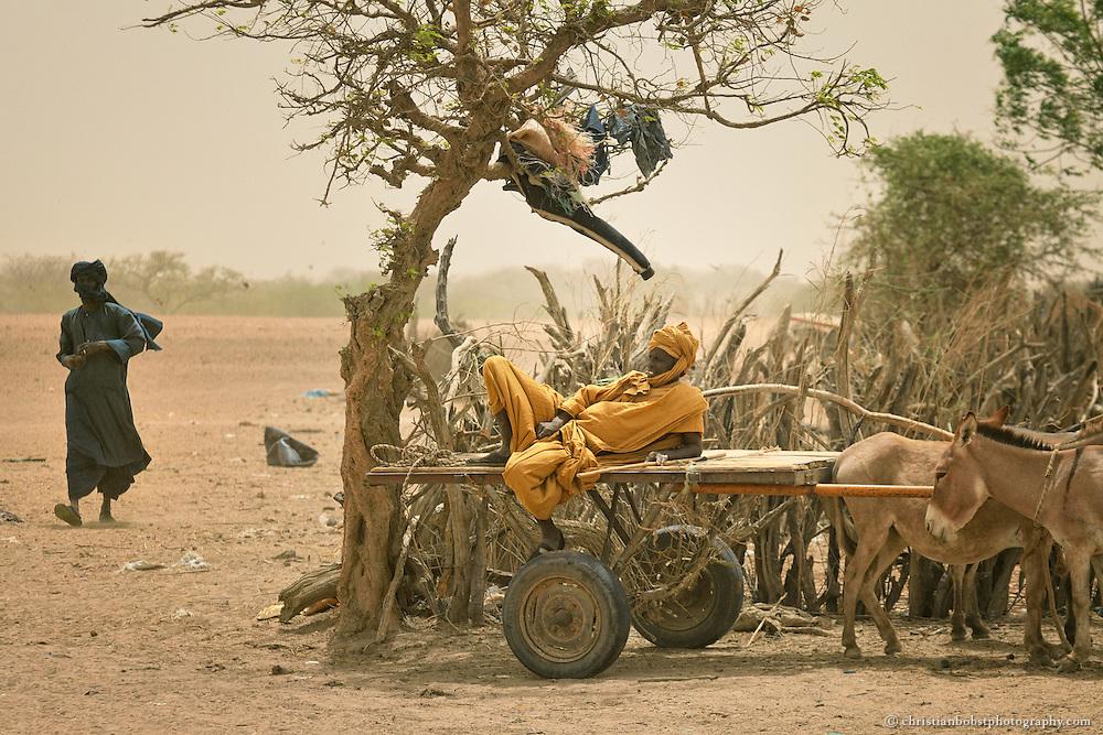 Ein Bauer ruht sich während des Viehmarktes in YOUNOUFERE auf seinem Wagen aus.
