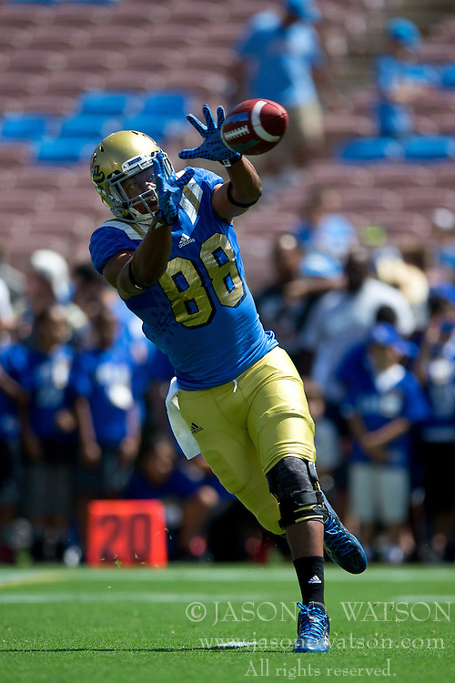 PASADENA, CA - SEPTEMBER 05:  Wide receiver Austin Roberts #88 of the UCLA Bruins catches a pass before the game against the Virginia Cavaliers at the Rose Bowl on September 5, 2015 in Pasadena, California.  The UCLA Bruins defeated the Virginia Cavaliers 34-16. (Photo by Jason O. Watson/Getty Images) *** Local Caption *** Austin Roberts