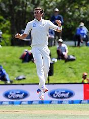 Christchurch-Cricket, New Zealand v Pakistan, day 4