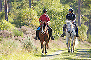 Horse riding in Culbin, Aberdeenshire and Moray Forest District, Forestry Commission Scotland