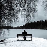 Man in black, sitting alone on a park bench in snow over looking frozen lagoon with large weeping willow trees.