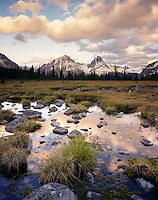 Wetlands in the Tonquin Valley Jasper National Park Alberta Canada
