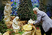 ​Linda Santelli of St. Celestine Parish in Elmwood Park places the Christ Child among the parish manger scene on Sunday, December 21st. 2014 l Brian J. Morowczynski-ViaPhotos<br /> <br /> For use in a single edition of Catholic New World Publications, Archdiocese of Chicago. Further use and/or distribution may be negotiated separately. <br /> <br /> Contact ViaPhotos at 708-602-0449 or email brian@viaphotos.com.