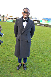 TINIE TEMPAH at the 2013 Hennessy Gold Cup at Newbury Racecourse, Berkshire on 30th November 2013.
