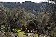 Corsica. France. Horse riding  around Sheepfold in San Pultru,  Corsica  France   / bergerie a San Pultru  sud corse. Randonnee a cheval tourisme equestre;  Corse  France