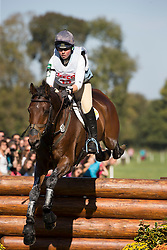 King Kitty (GBR) - Ceylor LAN<br /> Cross country 7 years old horses<br /> Mondial du Lion - Le Lion d'Angers 2014<br /> © Dirk Caremans<br /> 18/10/14