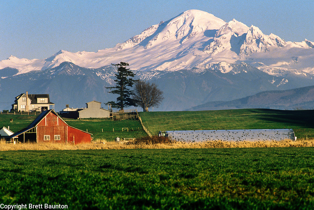 Mt. Baker, Farmland, Whatcom County, Washington State, Cover of Whatcom Places Land Trust Book