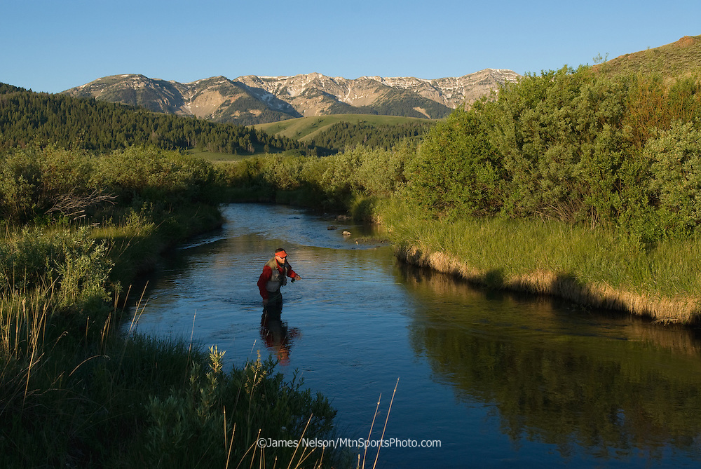 An angler fly fishes for trout on a creek in southwest Montana.