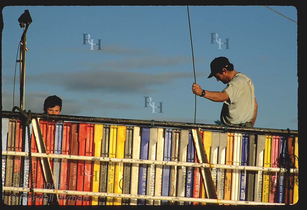 Deck hand guides crane cable into hold of boat while boy peeks from behind colorful stack of plastic fish crates; Dingle, Ireland.