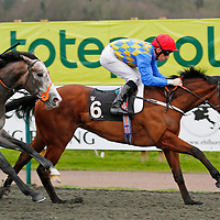 Safari Sunseeker and Shane Kelly winning the 1.05 race