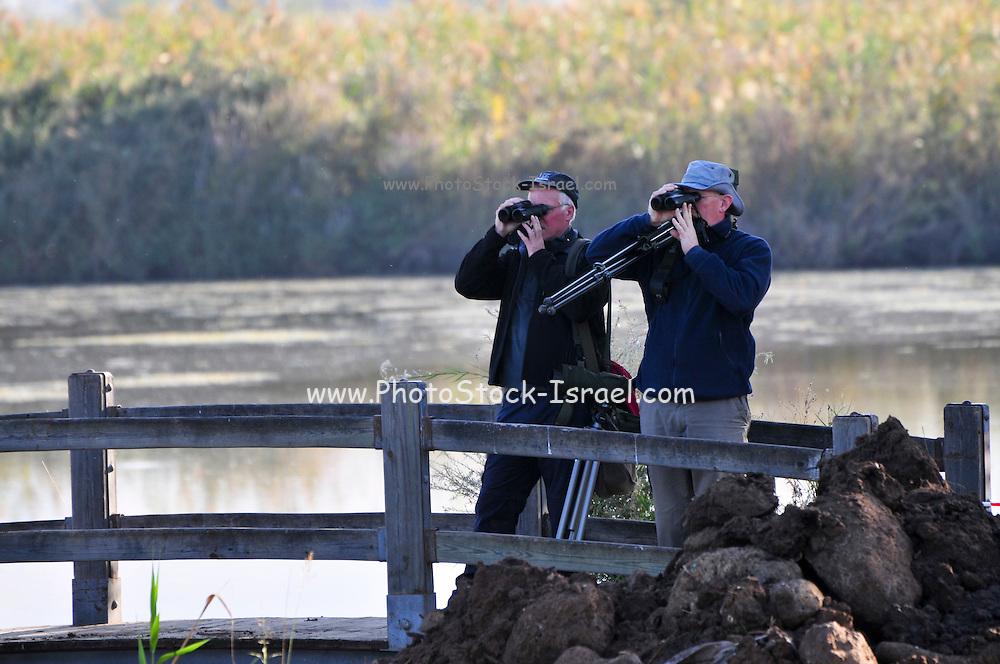 Israel, Hula Valley, Lake Agamon Bird sanctuary nature reserve Bird watchers