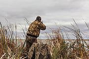 Photo No 2 of series - Hunter kills canvasback drake on open water marsh.