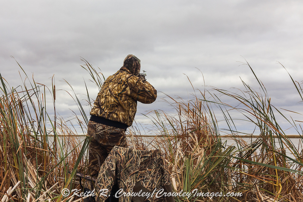 Photo No 2 of series - Hunter kills canvasback drake on open water marsh.