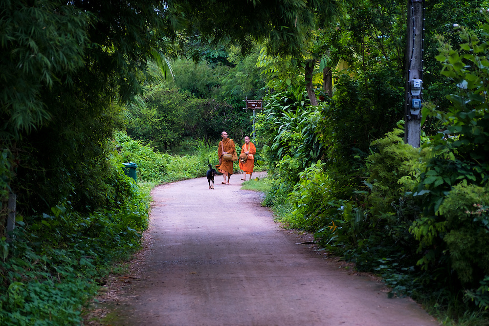 Morning alms walk in rural Nakhon Nayok, Thailand. PHOTO BY LEE CRAKER