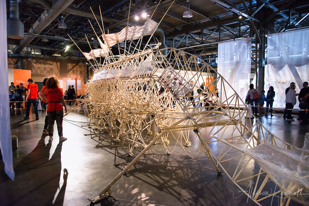 Scenes from a special exhibit at the San Francisco Exploratorium of Strandbeest kinetic creatures invented by Theo Jansen