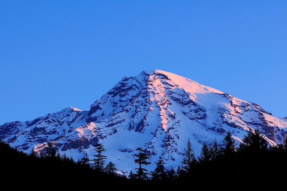 Sunrise light on Mount Rainier summit from Longmire Meadow; Mount Rainier National Park, Washington.
