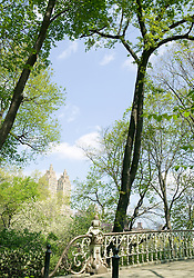 Early Spring, Central Park