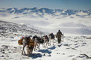 Tsaatan cross pass that leads into Hunkher mountains, spring reindeer round-up, northern Mongolia