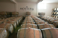 Mottura wines-Tuglie-Puglia, Italy