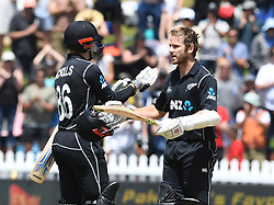 New Zealand's Kane Williamson celebrates his century against Pakistan in the first one day cricket international at the Basin Reserve, Wellington, New Zealand, Saturday, January 06, 2018. Credit:SNPA / Ross Setford  **NO ARCHIVING**