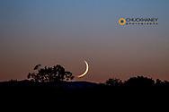 Crescent moon sets over prairie at the American Prairie Reserve near Malta, Montana, USA