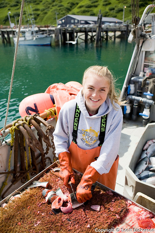 Commercial fishing deckhand, Emma Teal Laukitis, cuts pink salmon into pieces while in the King Cove Harbor. The bait will be used for halibut longlining near the Aleutian Islands.